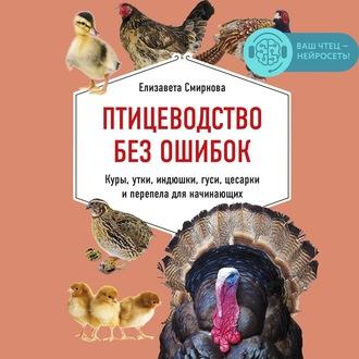 Аудиокнига Птицеводство без ошибок. Куры, утки, индюшки, гуси, цесарки и перепела для начинающих