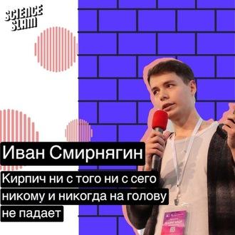 Аудиокнига Кирпич ни с того ни с сего никому и никогда на голову не свалится