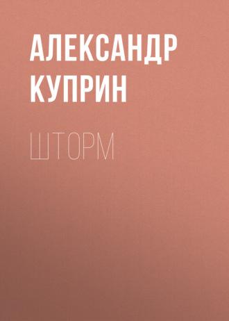 Аудиокнига Шторм