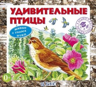 Аудиокнига Удивительные птицы