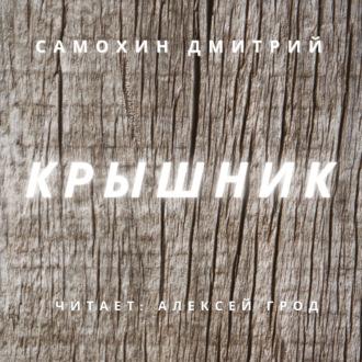 Аудиокнига Крышник