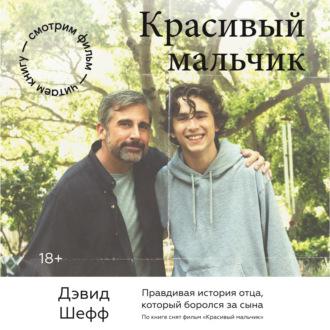 Аудиокнига Красивый мальчик. Правдивая история отца, который боролся за сына