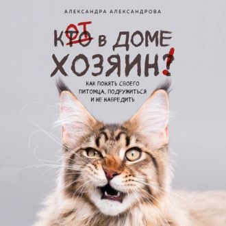Аудиокнига Кот в доме хозяин! Как понять своего питомца, подружиться и не навредить