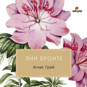 Аудиокнига Агнес Грей