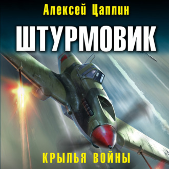 Аудиокнига Штурмовик. Крылья войны