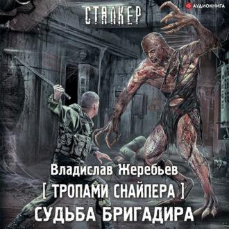 Аудиокнига Тропами Снайпера. Судьба Бригадира
