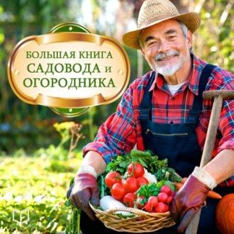 Аудиокнига Большая книга садовода и огородника