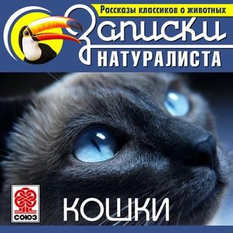 Аудиокнига Рассказы классиков о животных. Кошки