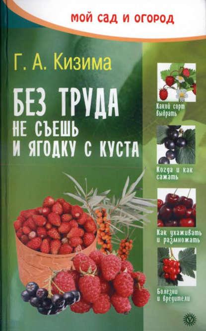 Без труда не съешь и ягодку с куста онлайн-маркет Talapai