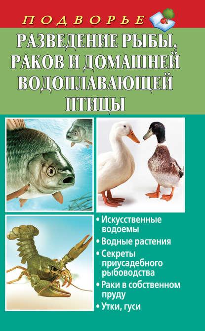 Купить Разведение рыбы, раков и домашней водоплавающей птицы по цене 675, смотреть фото