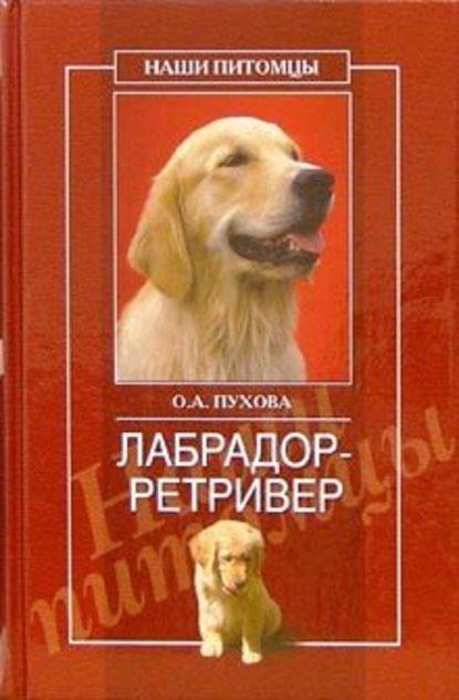 Купить Лабрадор ретривер по цене 671, смотреть фото