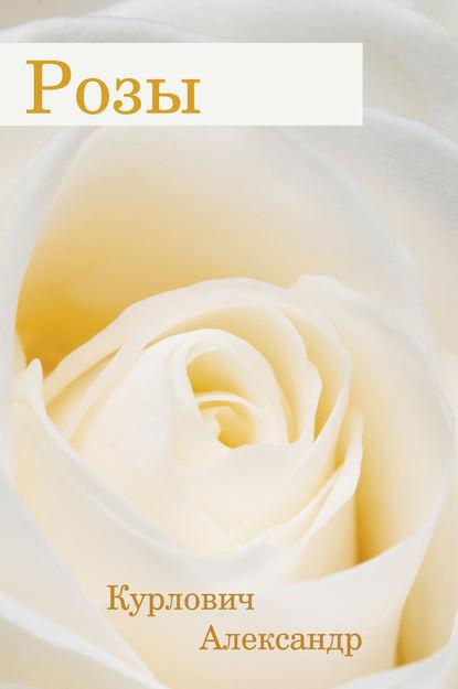 Купить Розы по цене 554, смотреть фото