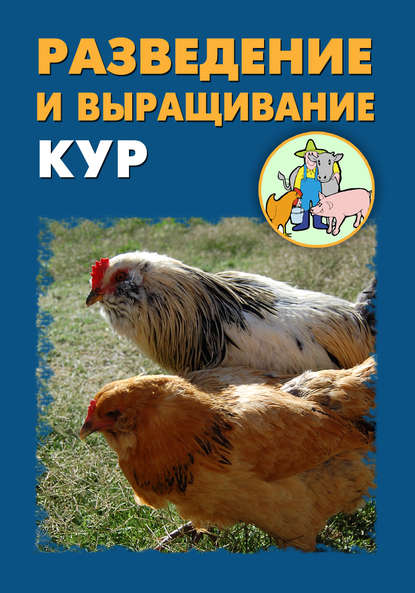 Купить Разведение и выращивание кур по цене 344, смотреть фото