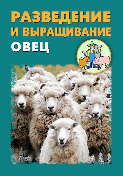 Купить Разведение и выращивание овец по цене 344, смотреть фото