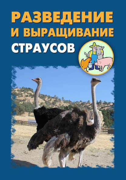 Купить Разведение и выращивание страусов по цене 344, смотреть фото