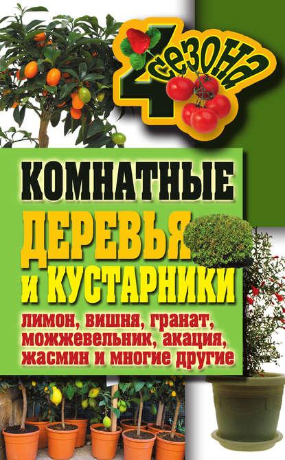 Купить Комнатные деревья и кустарники: лимон, вишня, гранат, можжевельник, акация, жасмин и многие другие по цене 277, смотреть фото