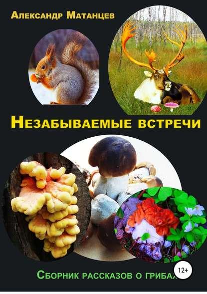 Купить Незабываемые встречи. Сборник рассказов о грибах по цене 1532, смотреть фото