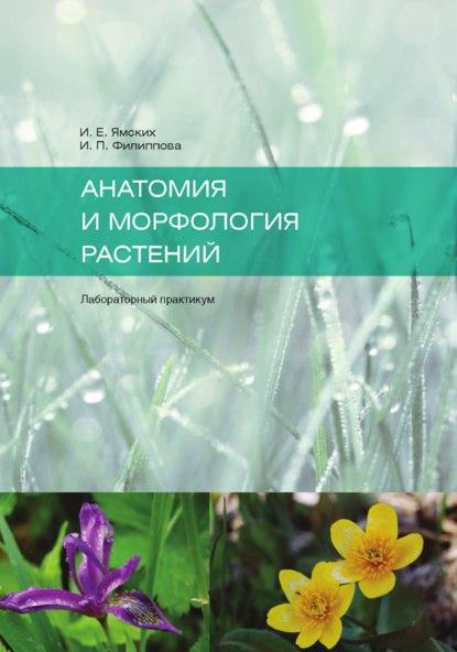 Купить Анатомия и морфология растений по цене 1225, смотреть фото