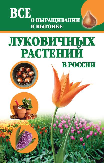 Купить Все о выращивании и выгонке луковичных растений в России по цене 380, смотреть фото