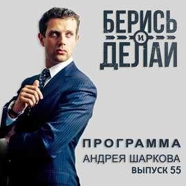 Аудиокнига - «Виталий Денисов и Герман Гаврилов в гостях у «Берись и делай»»
