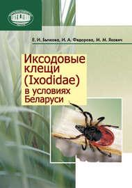 Иксодовые клещи (Ixodidae) в условиях Беларуси