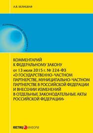 Комментарий к Федеральному закону от 13 июля 2015 г. № 224-ФЗ «О государственно-частном партнерстве, муниципально-частном партнерстве в Российской Федерации и внесении изменений в отдельные законодательные акты Российской Федерации»