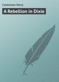 A Rebellion in Dixie