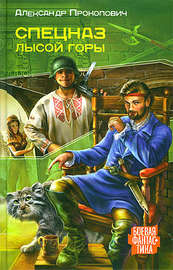 Книга Спецназ Лысой Горы