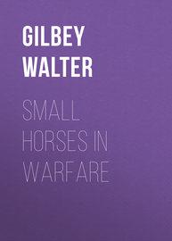 Small Horses in Warfare