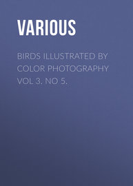 Birds Illustrated by Color Photography Vol 3. No 5.