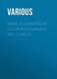 Birds, Illustrated by Color Photography, Vol. 2, No. 3