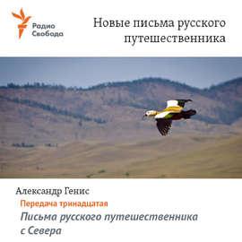 Письма русского путешественника с Севера