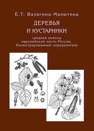 Деревья и кустарники средней полосы европейской части России. Иллюстрированный определитель