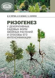 Ризогенез у декоративных садовых форм хвойных растений и способы его интенсификации
