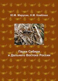 Пауки Сибири и Дальнего Востока России