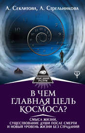 Книга В чем главная цель Космоса? Смысл жизни, существование души после смерти и новый уровень жизни без страданий