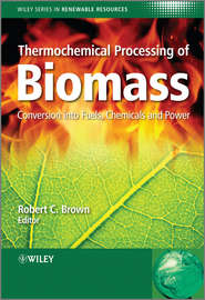 Thermochemical Processing of Biomass. Conversion into Fuels, Chemicals and Power