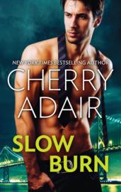 Slow Burn: Seducing Mr. Right / Take Me