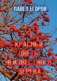 Красные цветы неизвестного дерева