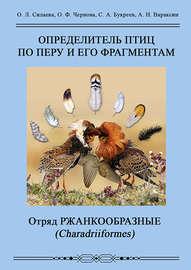 Определитель птиц по перу и его фрагментам. Отряд Ржанкообразные (Сharadriiformes)