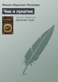 Книга Чик и лунатик