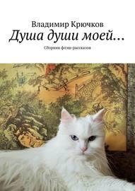 Душа души моей… Сборник флэш-рассказов