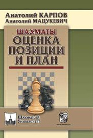 Шахматы. Оценка позиции и план