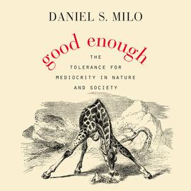 Good Enough (Unabridged)