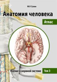 Анатомия человека. Атлас. Том 3. Учение о нервной системе