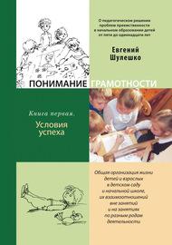Понимание грамотности. Книга 1. Условия успеха