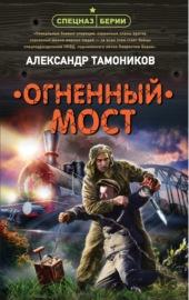 Книга Огненный мост