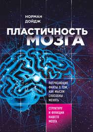Пластичность мозга. Потрясающие факты о том, как мысли способны менять структуру и функции нашего мозга