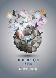 О природе ума