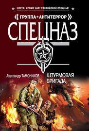 Книга Штурмовая бригада